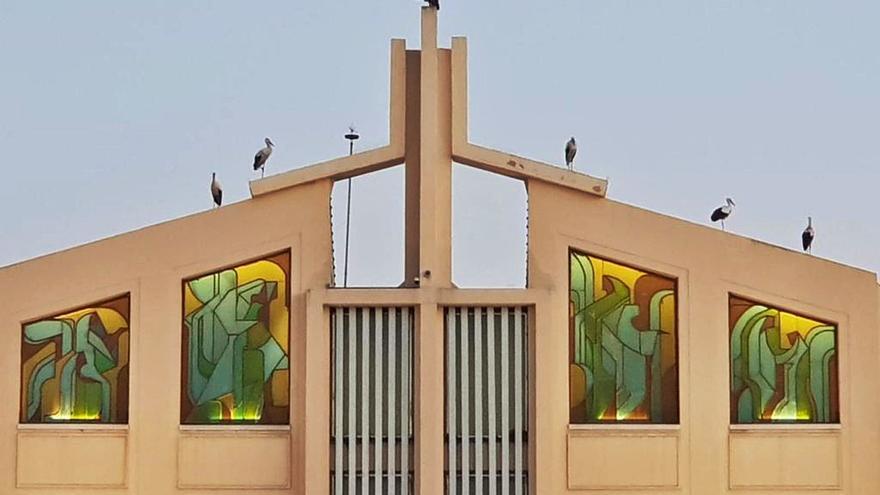 Cigüeñas de paso en los tejados de Parcemasa