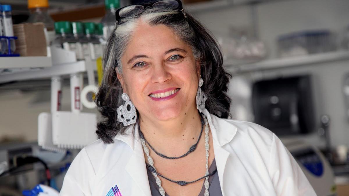 La viróloga, investigadora y catedrática de microbiología, Ana Fernández-Sesma.