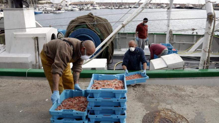 Els pescadors gironins perden un 13% de facturació per la pandèmia