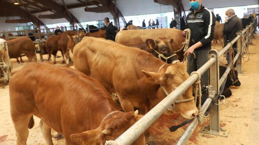Galicia se apunta al seguro agrario