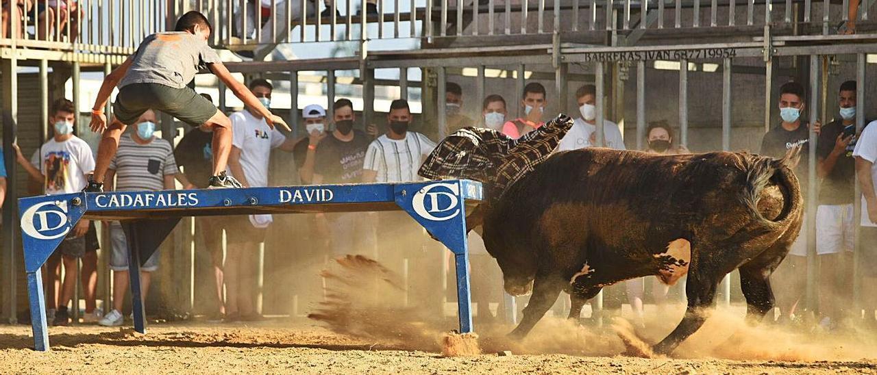 Primera tarde de toros y vacas en el Port. | ROBERTO MARTÍNEZ