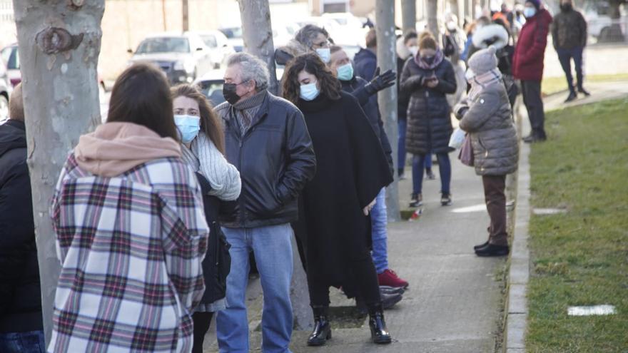 Coronavirus en Zamora   El primer cribado masivo de la capital llega este viernes y sábado a la Ciudad Deportiva