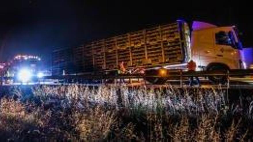 Arde un camión de Murcia lleno de pollos vivos en Cox
