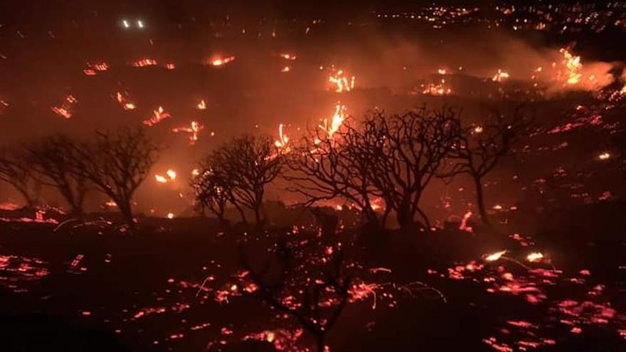 Los equipos de extinción logran contener el fuego a pesar del fuerte viento
