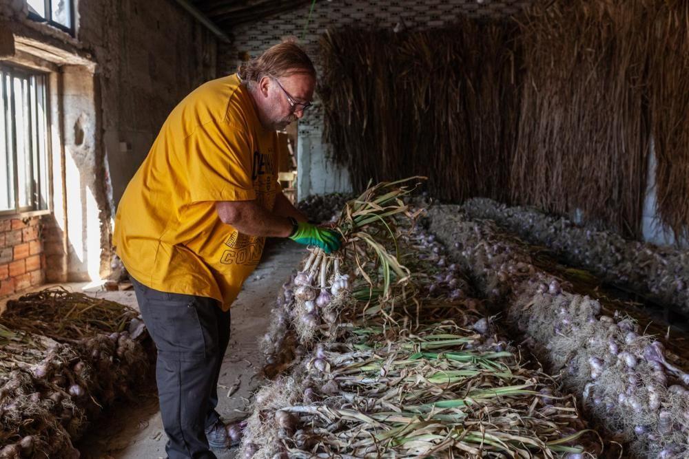 El trenzado de los ajos en Bóveda de Toro