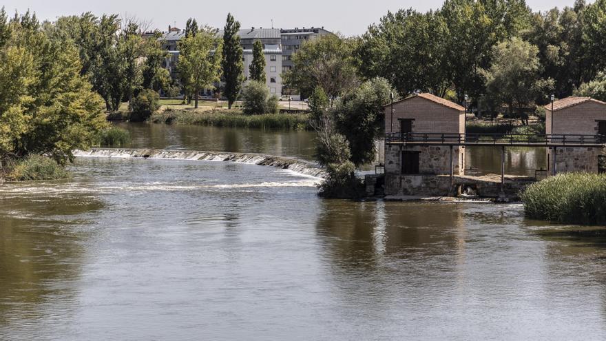 Comienza el arreglo del azud de Cabañales en Zamora