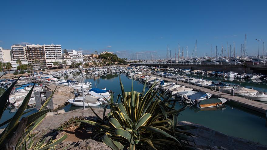 El puerto de Palma probará un sistema de limpieza natural del agua