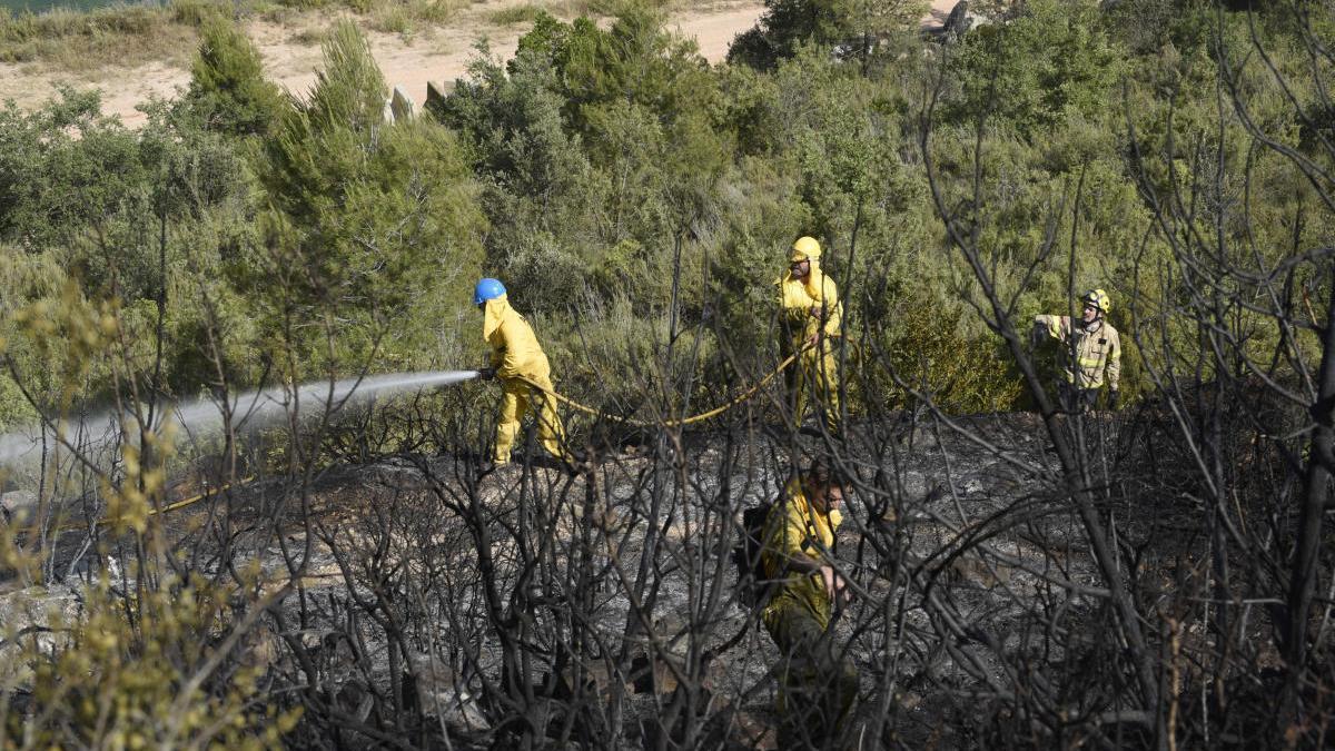 Bombers en un incendi al Bages, l'any passat  