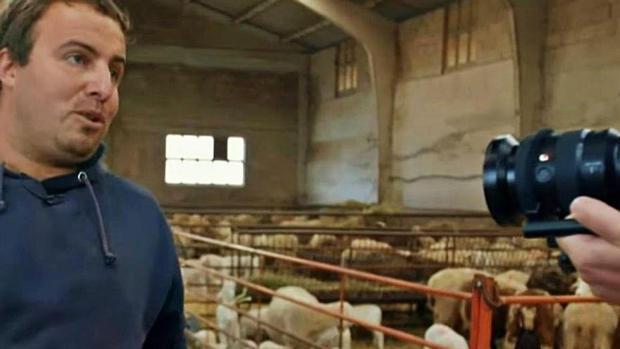 Frank de la Jungla visita una explotación de ovino de Santa Colomba, Sanabria