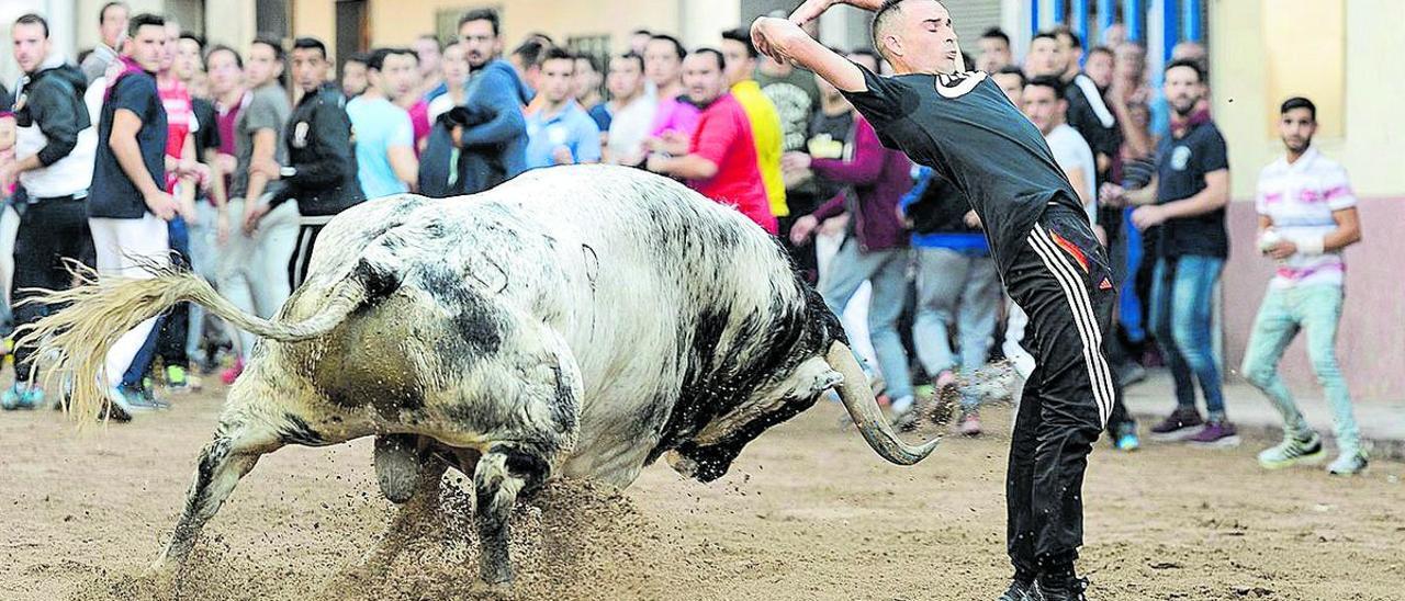 Los toros volverán a las calles del recinto de la Sagrada Familia con ocho exhibiciones en tan solo dos jornadas.