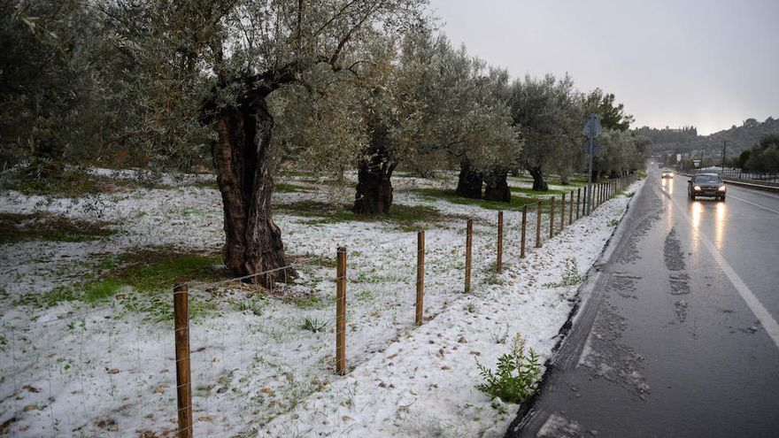 20 Zentimeter Neuschnee im Gebirge auf Mallorca