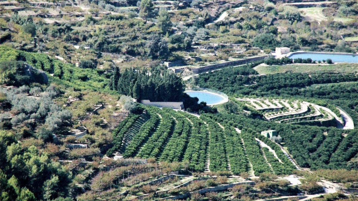 Huertos de naranjos de la Marina Alta.