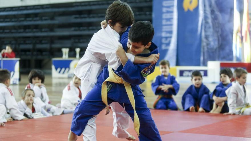 El judo asturiano, preparado para su regreso