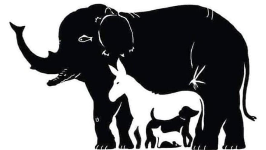 Solo 5 de cada 100 personas logran ver todos los animales de esta imagen