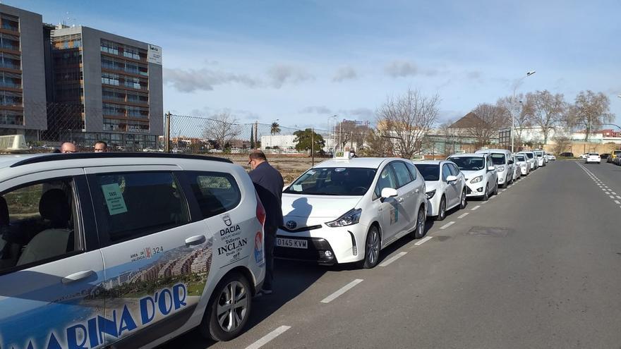 Cientos de taxistas hacen colas de más de 5 horas en Vara de Quart para actualizar el calendario laboral