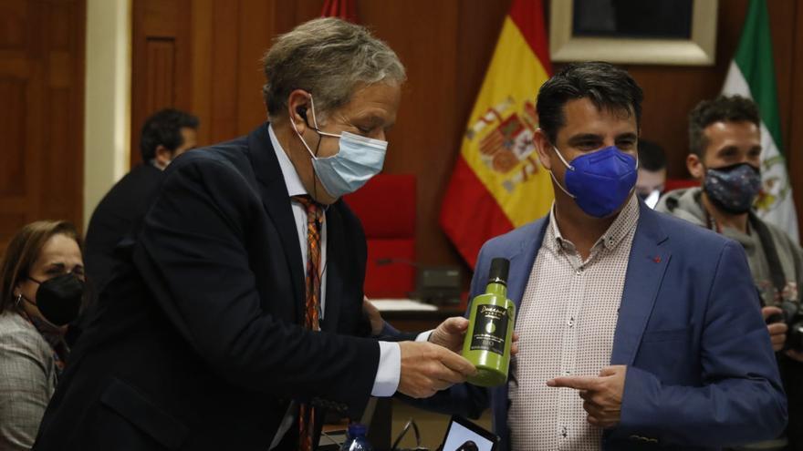 El Pleno de Córdoba rechaza el recargo del IBI de viviendas vacías que aprobará el Gobierno central