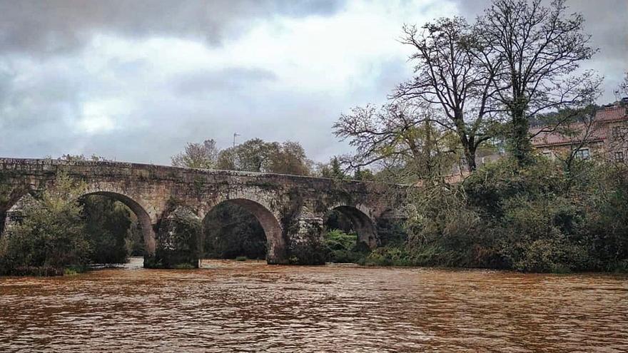 El cauce del Ulla, tintando de marrón, a la altura de Ponte Ledesma.