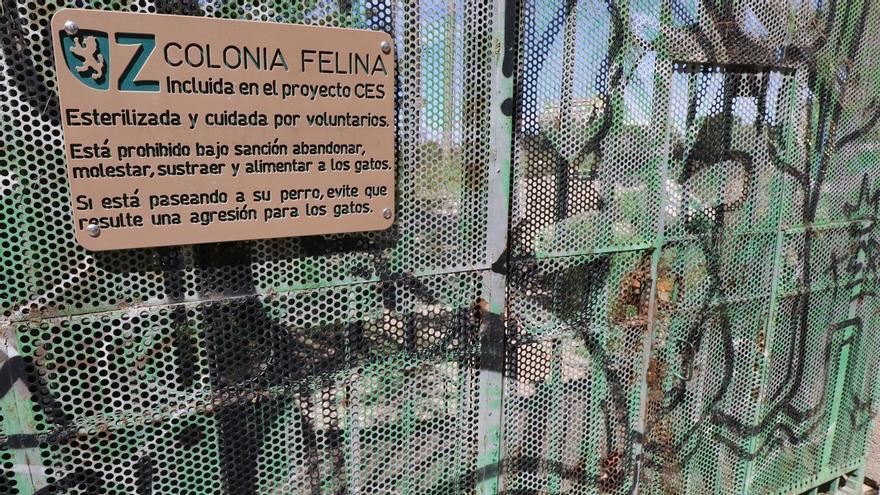 Zaragoza pide investigar los actos vandálicos en la colonia felina El Guano