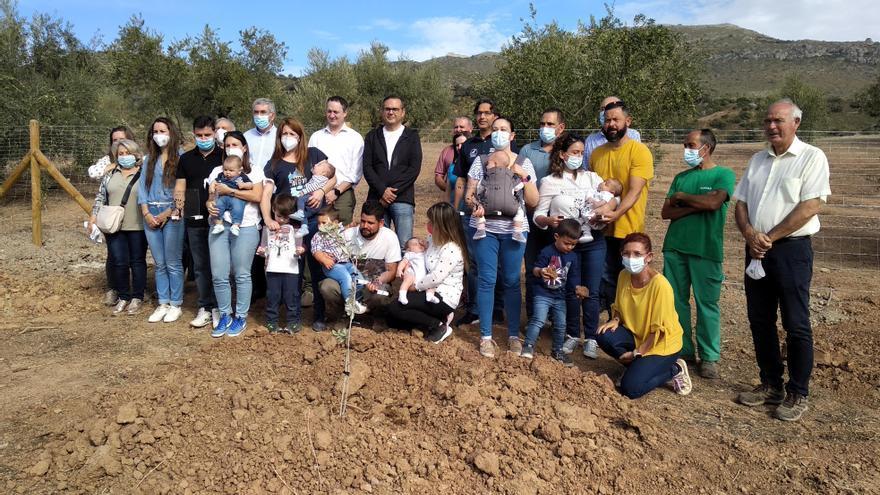 El proyecto 'Un nacimiento, un olivo' inicia su andadura en Carcabuey