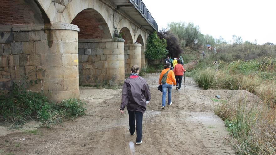 El Camino Mozárabe a Santiago recorre 14 municipios de Córdoba, con casi 125 kilómetros por Sierra Morena