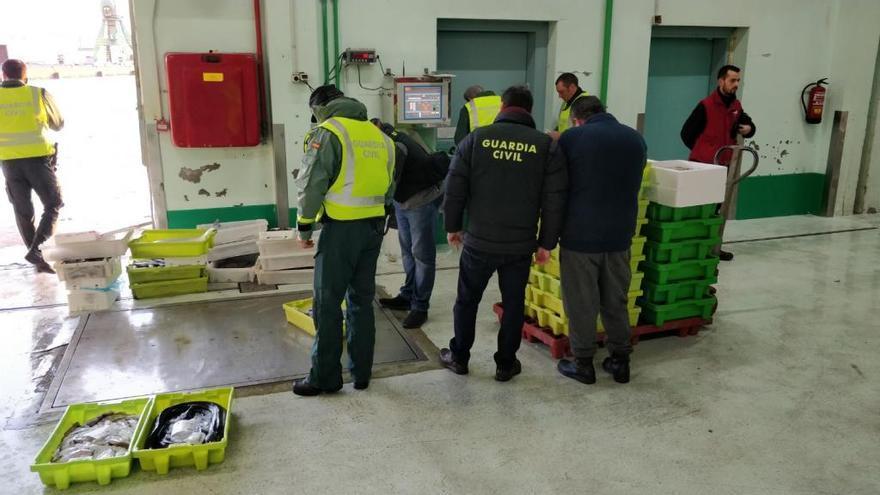 La Guardia Civil decomisa 300 kilos de pescado a minoristas a su salida de la lonja coruñesa