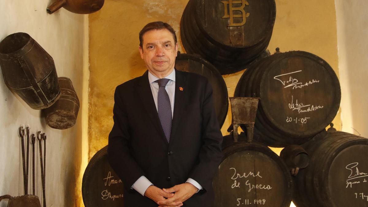 Luis Planas, ministro de Agricultura, Pesca y Alimentación, ayer en Bodegas Campos.