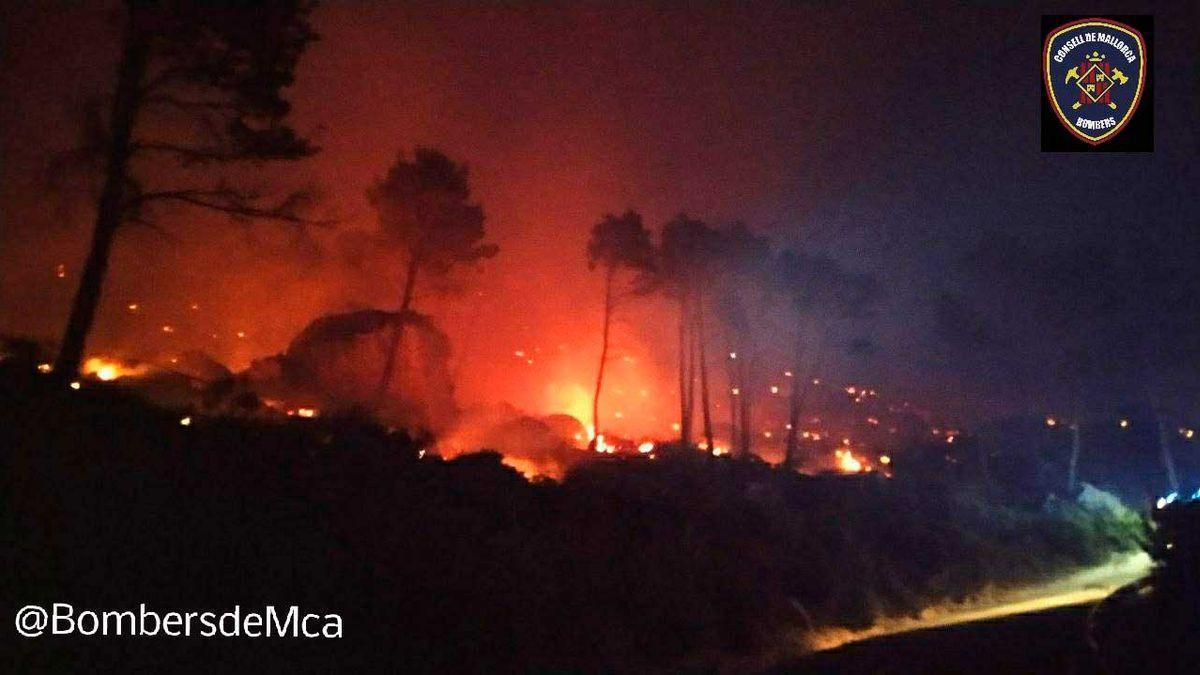 Un incendio forestal quema el Coll de sa Gramola.