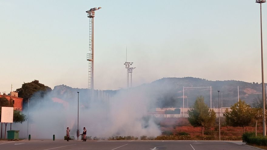 Castellón seguirá siendo 'mosquilandia': esto es lo que auguran los expertos para octubre