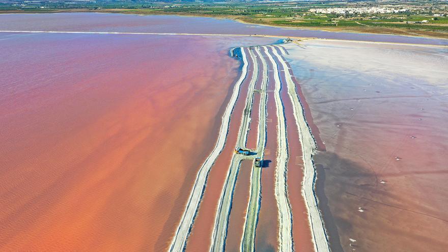 La salinera de Torrevieja extrae por primera vez sal de las orillas de la laguna rosa para paliar la falta de producción por el impacto de la DANA y la borrasca Gloria
