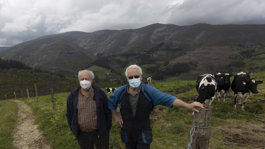 El gran parque eólico de Tineo abastecerá de energía verde a la planta de hidrógeno de Gijón