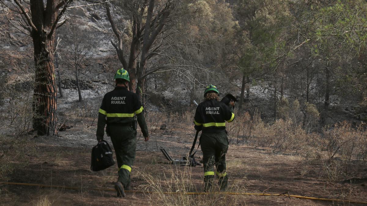 Dos agents rurals caminant en la zona de en l'incendi del Montgrí aquest dissabte