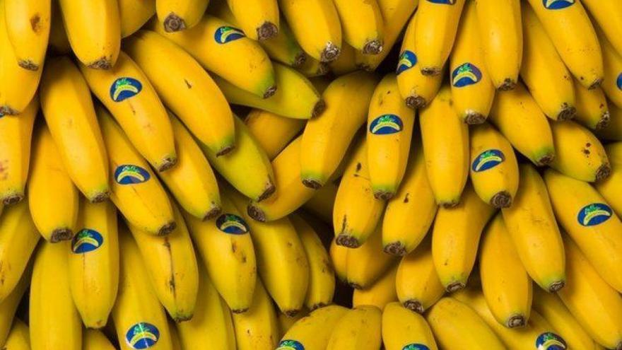 Plátano de Canarias, fruta oficial de La Vuelta a España 2019