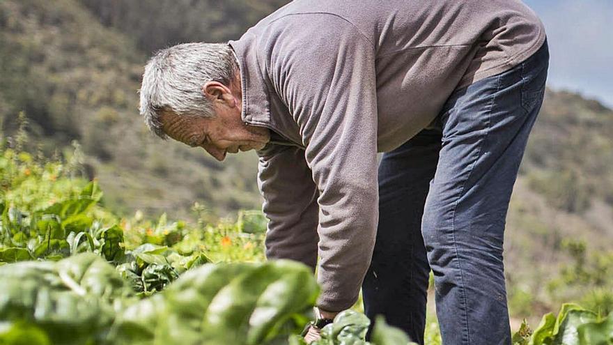 Los empleos 'verdes',  cada vez más demandados