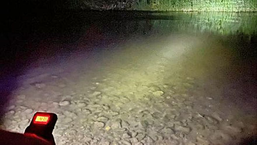 L'associació ANDA i membres de Capreolus fan un cens de ratpenats d'aigua a Olesa i Abrera