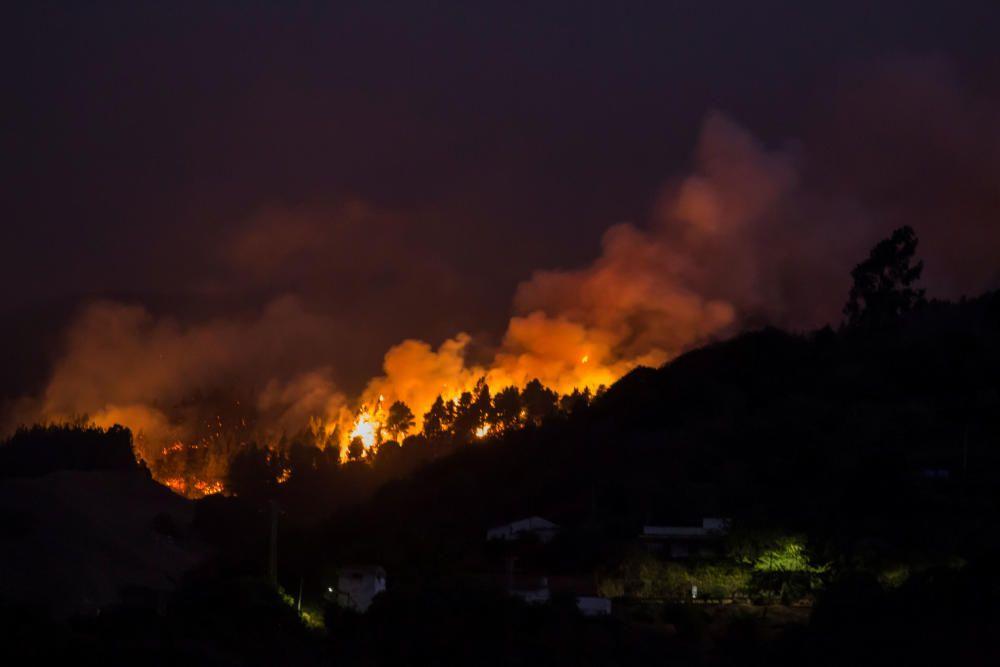 Un devastador incendio arrasa Gran Canaria.