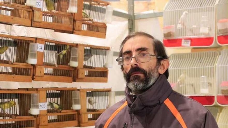 La Cría De Pájaros Es Una Afición No Un Negocio La Opinión De Zamora