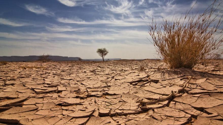 Emergencia climática extrema