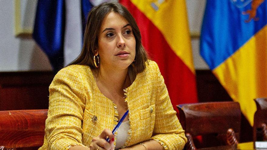 Rosario González, concejala de Bienestar Social del Ayuntamiento de Santa Cruz de Tenerife. | | E.D.