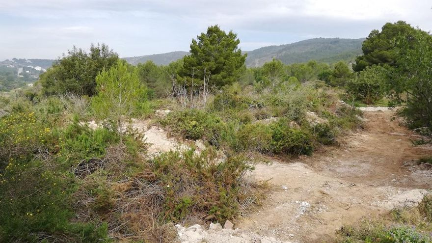 Benitatxell transformará un terreno de vertidos ilegales en un área verde para picnic