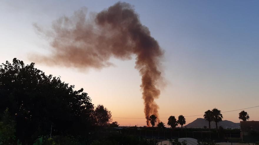 El incendio originado en un palmeral de Cullera se puede observar desde las poblaciones vecinas