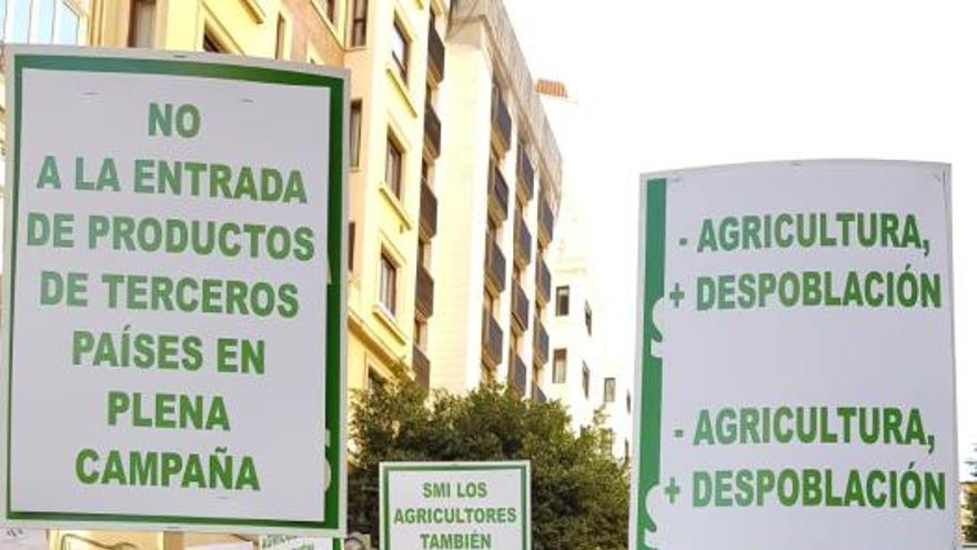 1.500 alicantinos en la movilización agraria que pide precios justos