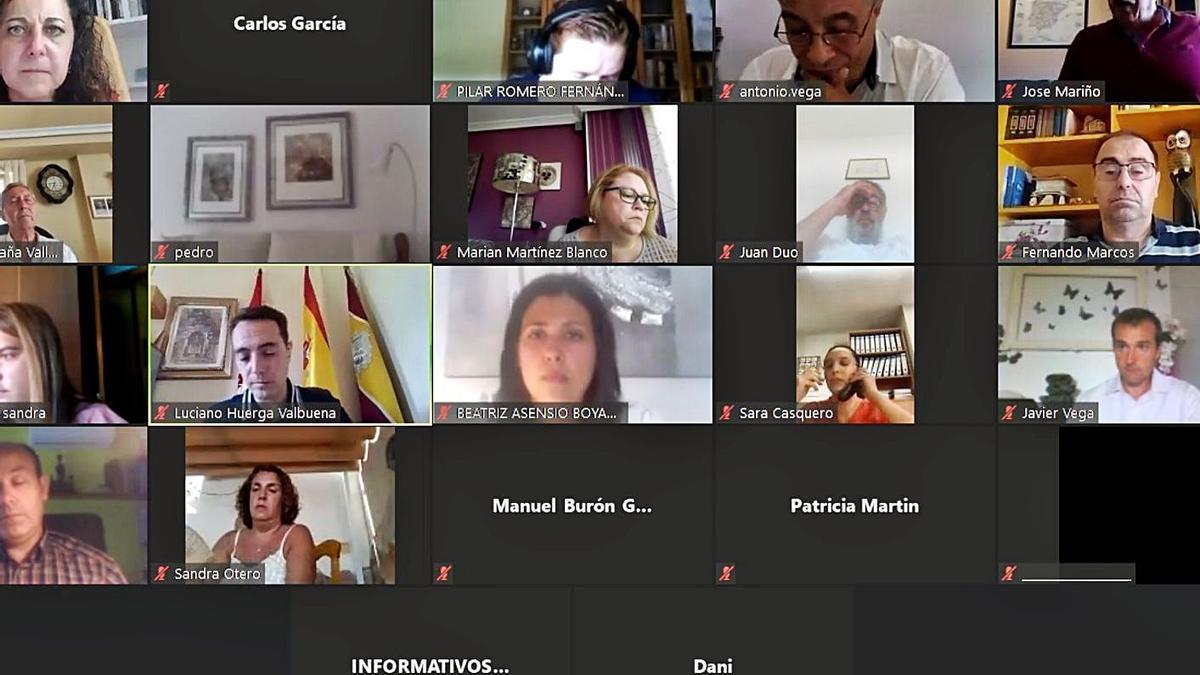 Asistentes a la sesión plenaria virtual.   C.G.R