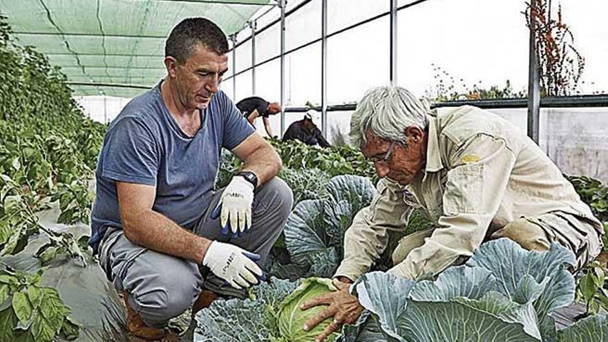La Caixa otorga ayudas sociales en el medio rural
