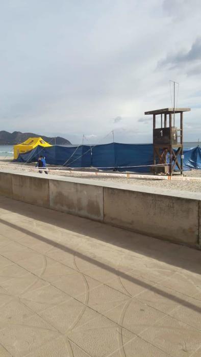 15 Meter langer Wal in Cala Millor gestrandet