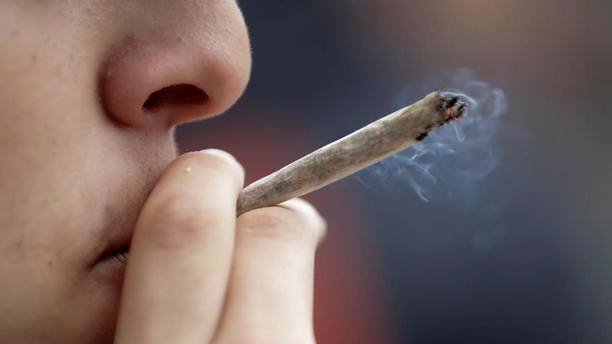Legalizar el cannabis reportaría 3.300 millones anuales a España, según un estudio