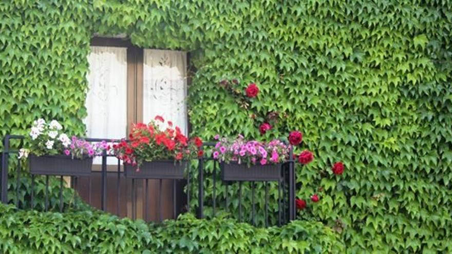 """Una fachada de Losilla gana en """"Aras en Flor"""""""
