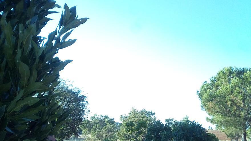 Cielos rasos en Zamora, este primer día de agosto.