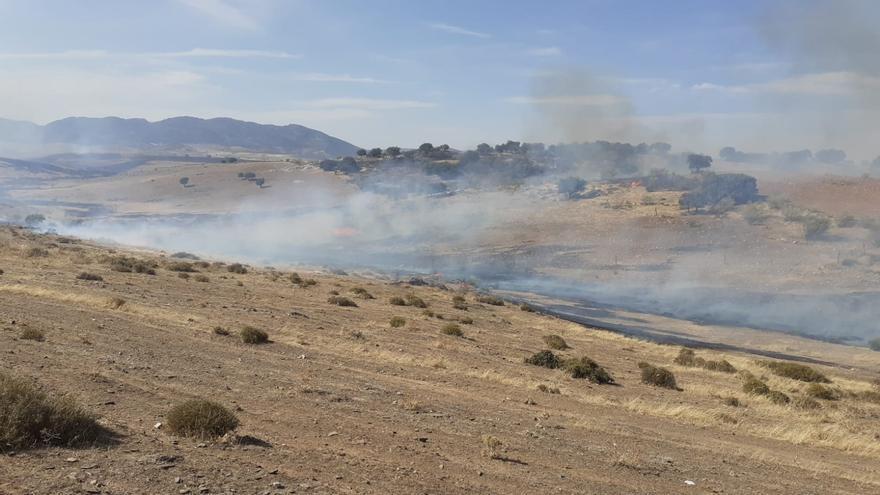 Bomberos del Infoca y de Extremadura intervienen en un incendio en Belalcázar
