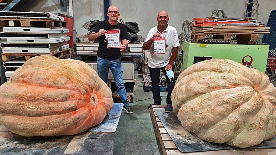 Una calabaza de 526 kilos gana el concurso de Muro