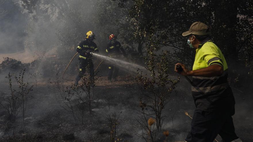 Parte de incendios de Zamora: un 15 de agosto fatídico